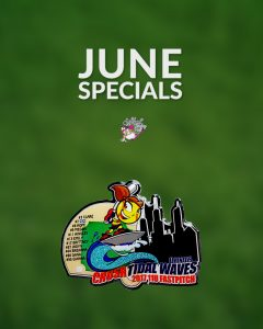 Softball Pin June Special
